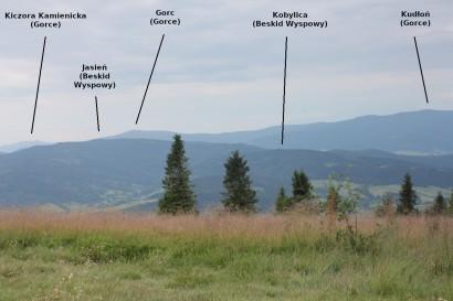 Panorama z Ćwilinia