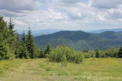 Panorama z Kutrzycy