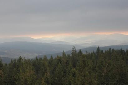 Widok z Borówkowej 2