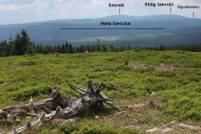 Sine Skałki - panorama