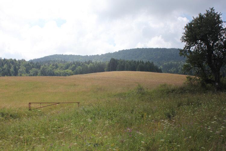 Wiejskie krajobrazy w dolinie potoku Ropa