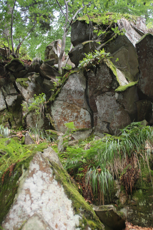 Rezerwat Skalny na Luboniu Wielkim