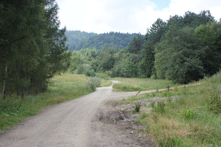 Dolina potoku Ropka